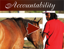 Accountability video link